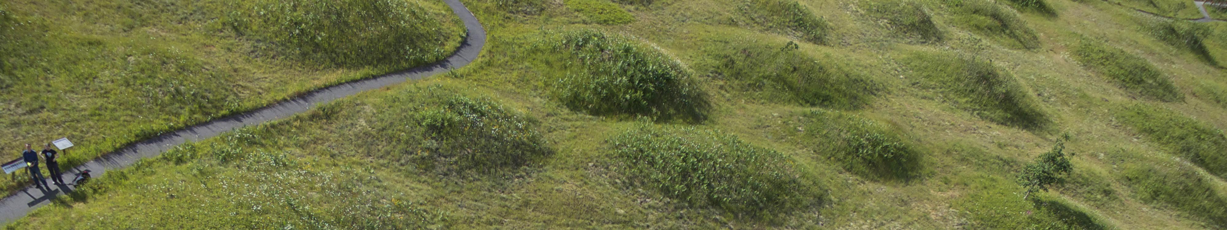Mima Prairie