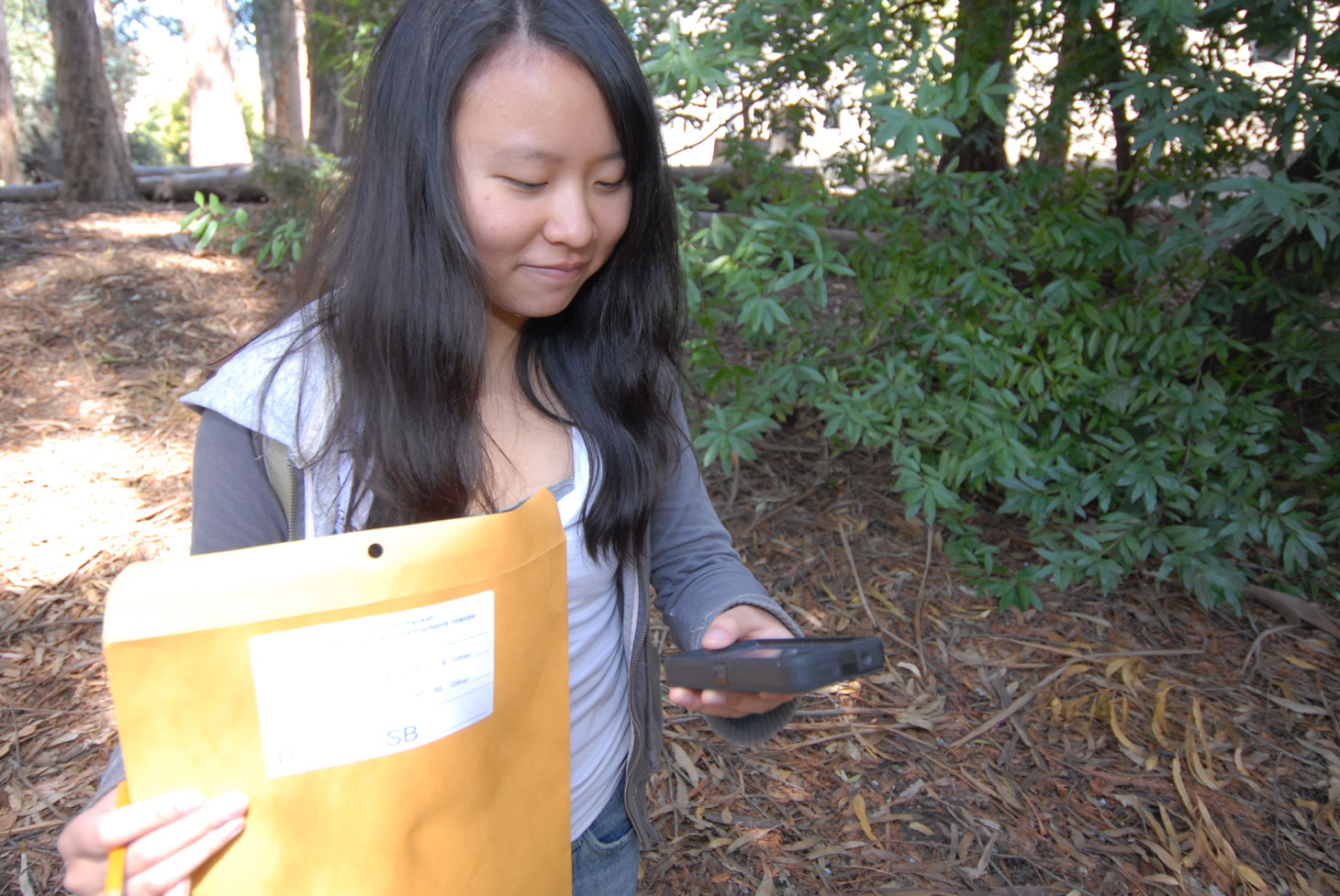Woman holds a smartphone while conducting tree survey in forested area