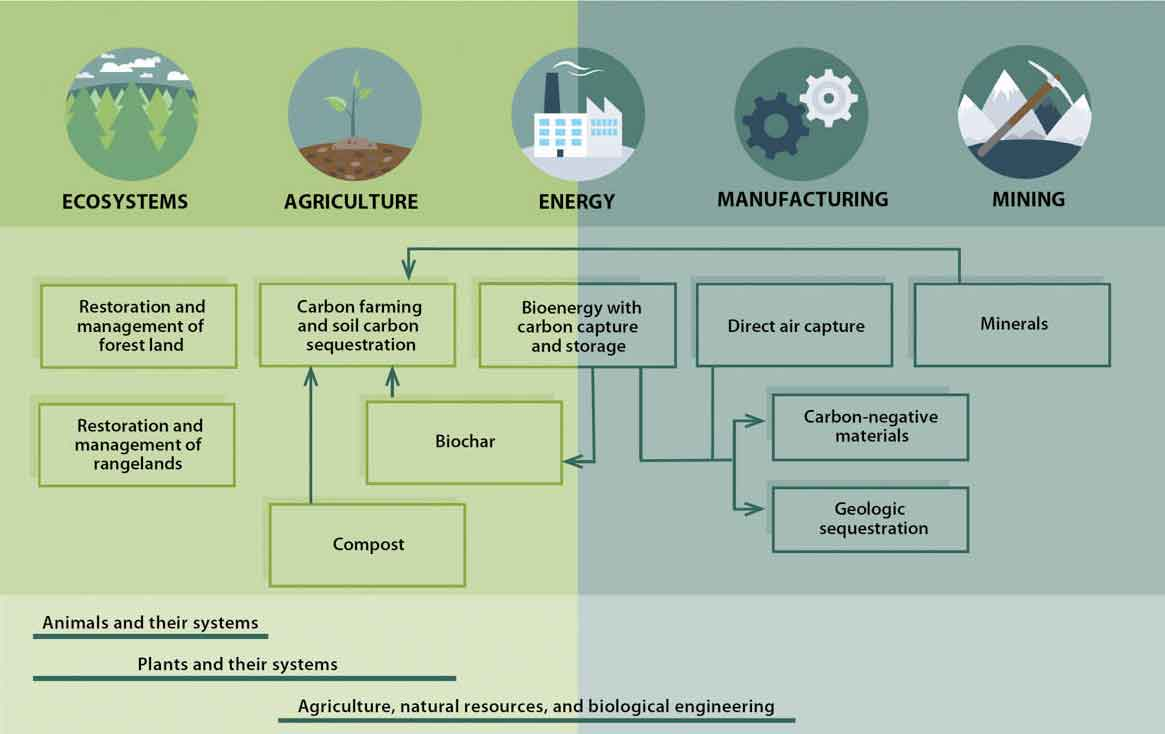 A graphic showing types of carbon removal technologies