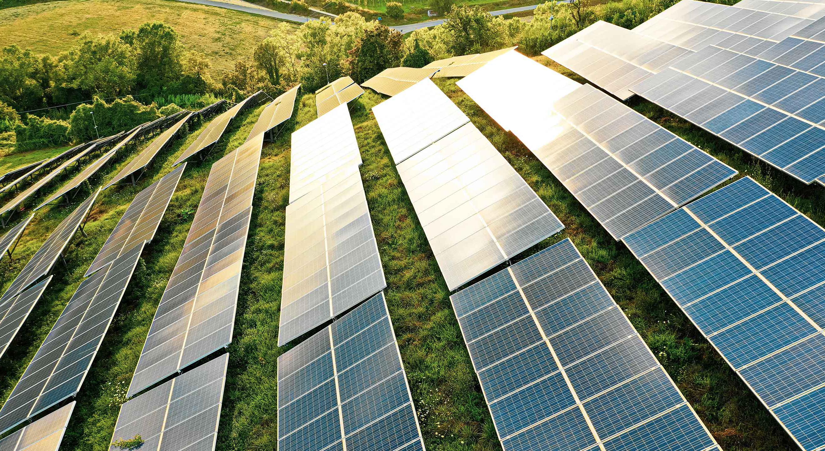 a field of solar panels among a green field
