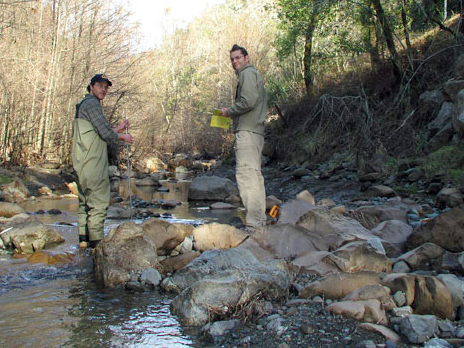 Image of students surveying a stream