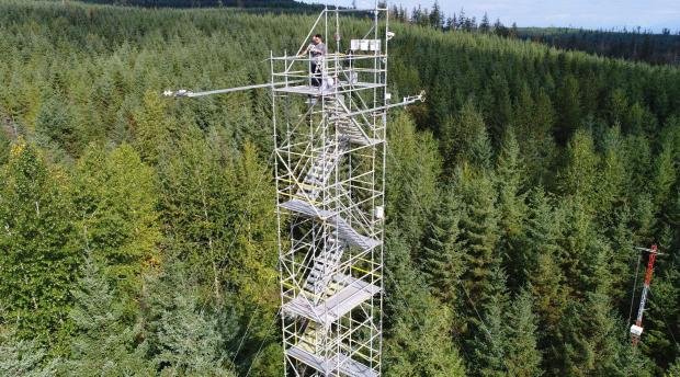 A researcher on top of a tall meteorological tower in a forest