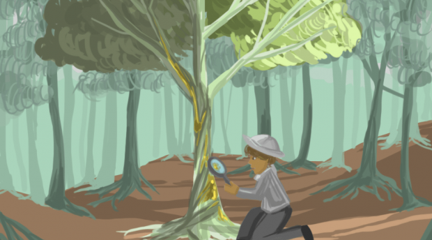Digital painting of person kneeling in front of tree to take a closer look at color patches on trunk.