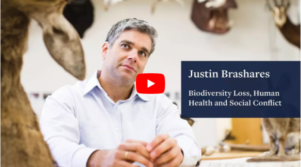 Justin Brashares on Biodiversity Loss, Human Health, and Social Conflict