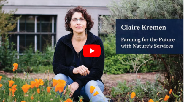 If our farms are going to feed a growing planet without hastening climate change, farmers needs to transition to diversified agriculture argues Claire Kremmen