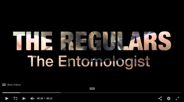 A screenshot of the The Regulars episode, featuring an entomologist