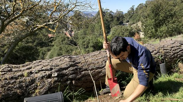 A man digs in soil with trees behind him.