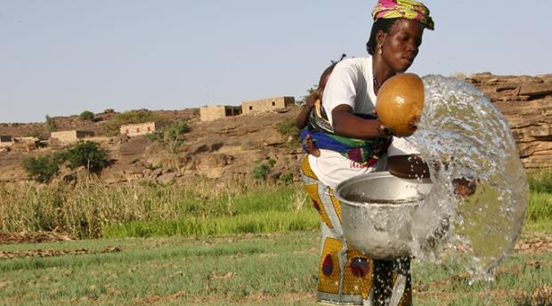A Dogon woman in Mali waters her onion garden