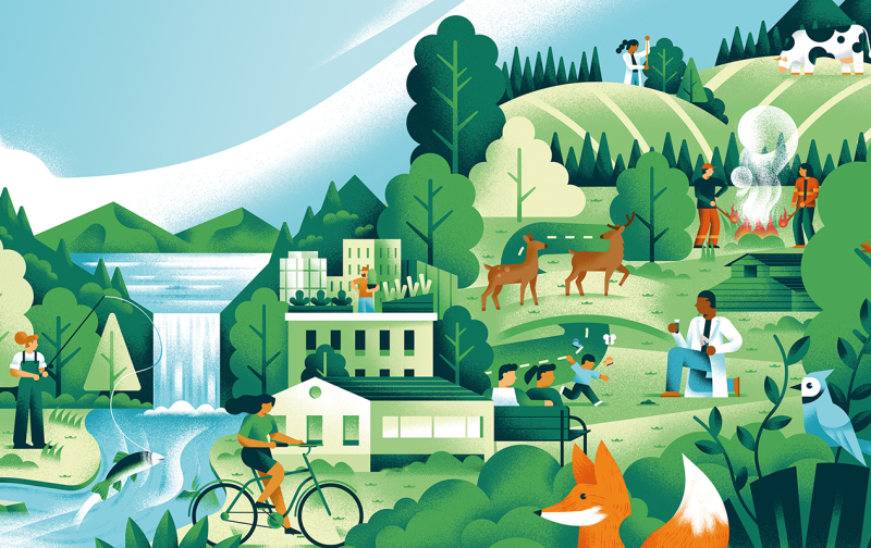 Illustration of a collage of images: someone fishing out of a river and waterfall, buildings, deer, birds, foxes, children playing, a scientist looking at a test tube, a person on a bicycle, and two people at a campfire.