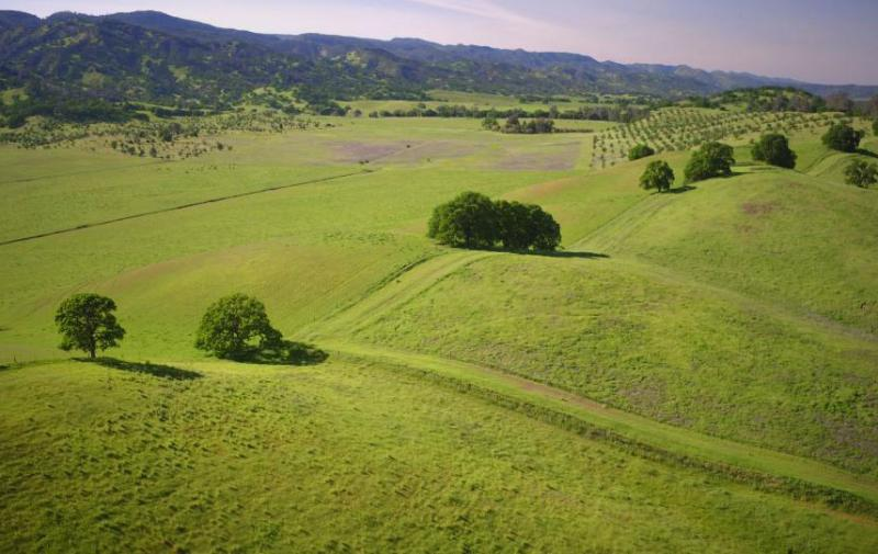 Soil beneath rangelands may help store significant levels of carbon dioxide. (Joe Proudman/UC Davis)