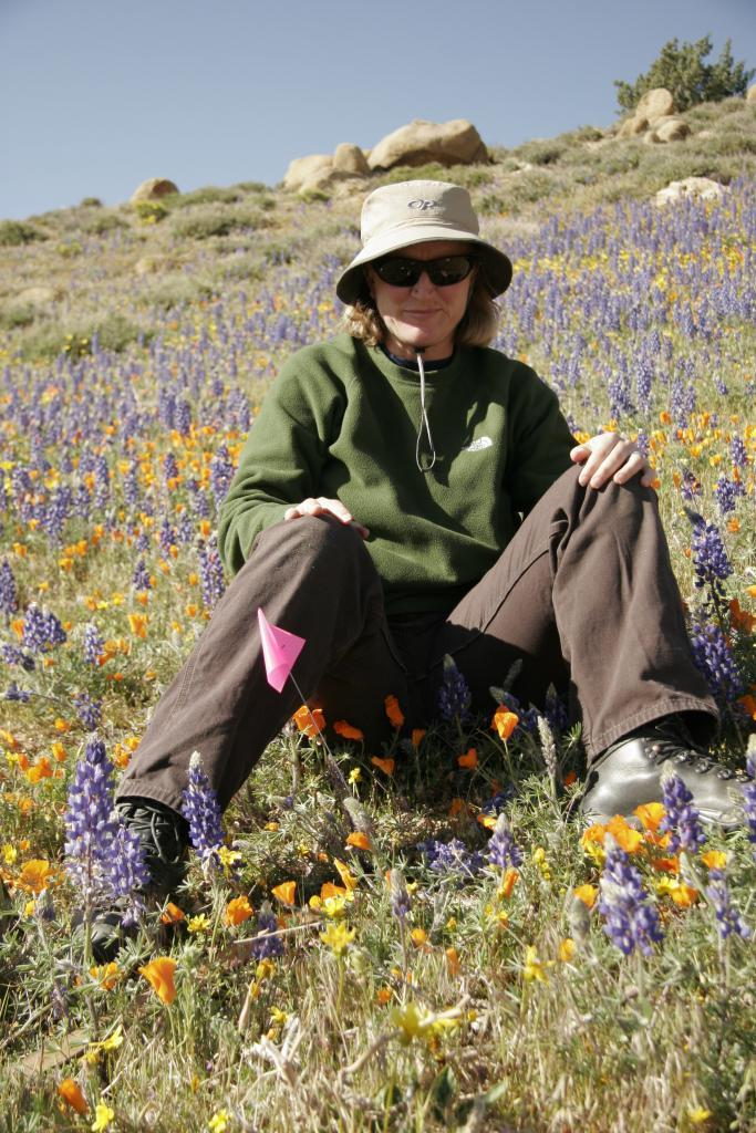 Michele Hammond's picture