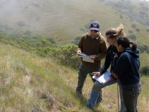 Field crew surveying coastal grasslands in Mt Tamalpais State Park, May 2008