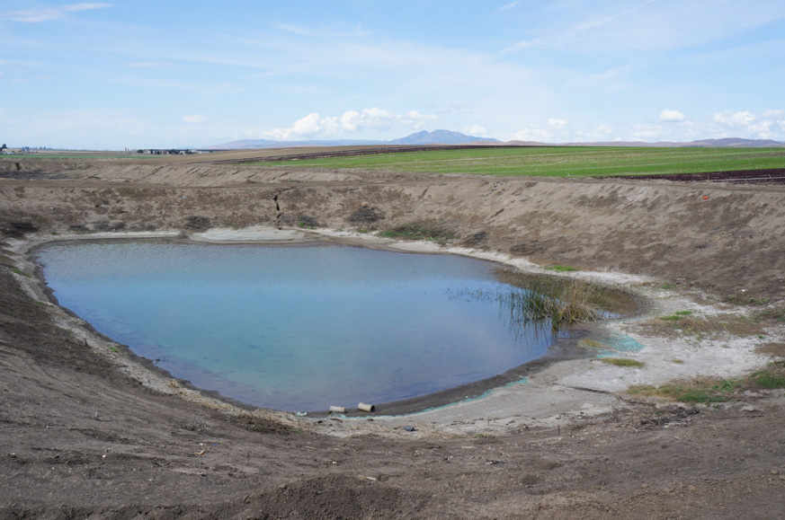 Catchment pond in Salinas Valley, California