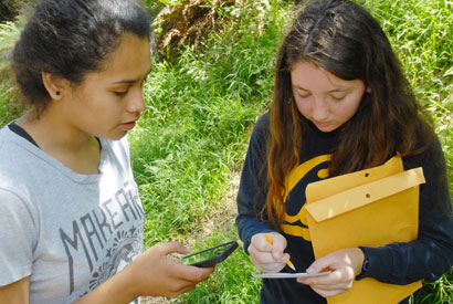 Two students collecting Sudden Oak Death samples