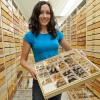 ESPM graduate student Joan Ball holds a display of specimens at the Essig Museum of Entomology. (Marek Jacubowski photo)