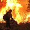 Photo of firefighters battling the Rim Fire.